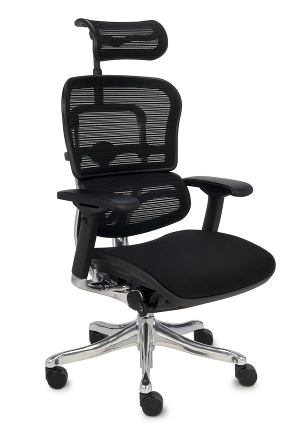 Fotel Obrotowy Ergohuman Plus BT KMD 31